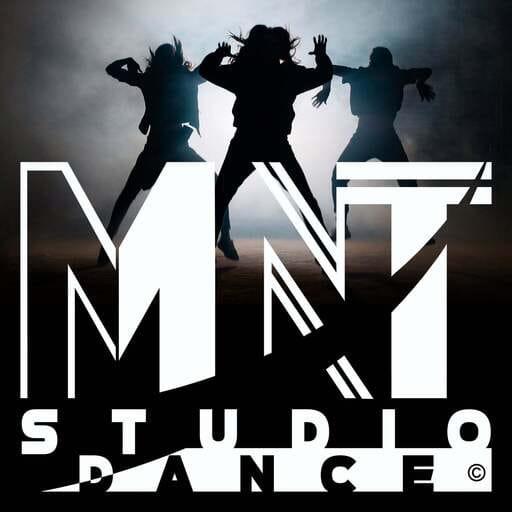 Quand la danse cubaine croise d'autres styles et disciplines - Mike Lumene - Président de MNT STUDIO DANCE à Savigny-le-Temple