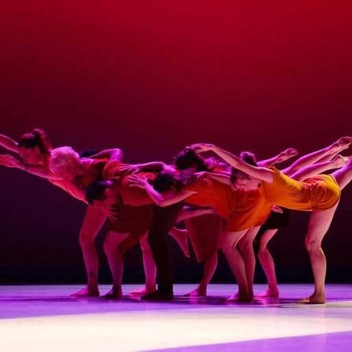 Du monde du spectacle à l'enseignement, parcours d'une passionnée de danse - Elisabeth Trehoust - Professeur de danse à Grenoble
