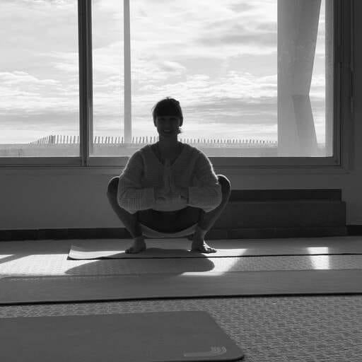 Le yoga Vinyasa : une pratique quotidienne pour trouver en soi la force et l'équilibre du corps et du mental - Elena Corona - Professeur de yoga ashtanga-vinyasa à Palavas-les-flots