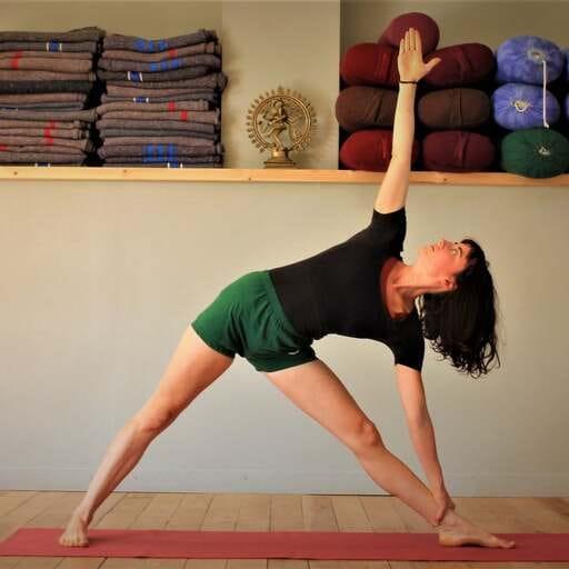 Theresa fait découvrir le yoga IYENGAR® à la campagne ! - Theresa Fornari - Professeur de yoga à Luc sur Aude et Toulouse