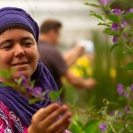 Les plantes pour se ressourcer naturellement - Emmanuelle Guilbaudeau - Praticienne en herboristerie et phytothérapie à Nantes