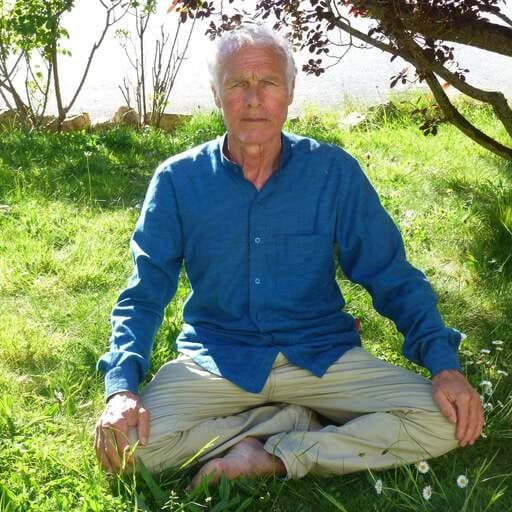 Dire au revoir aux douleurs chroniquesou trouver la sérénité - Émile Lozevis - Professeur de yoga à Vannes