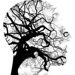 Une psychologue à l'écoute des problématiques de l'autisme - Julia Dehaye - Psychologue à Nantes
